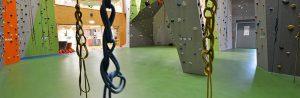 Danga laipiojimo salėms/sporto grindys